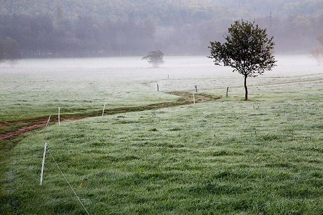 Entschleunigte Fotografie, © fototouren olszewski giefer