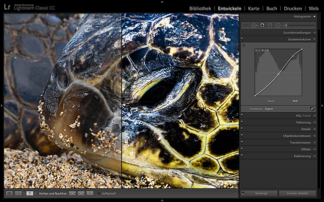 Hands-On-Training Lightroom Classic CC, © Maike Jarsetz