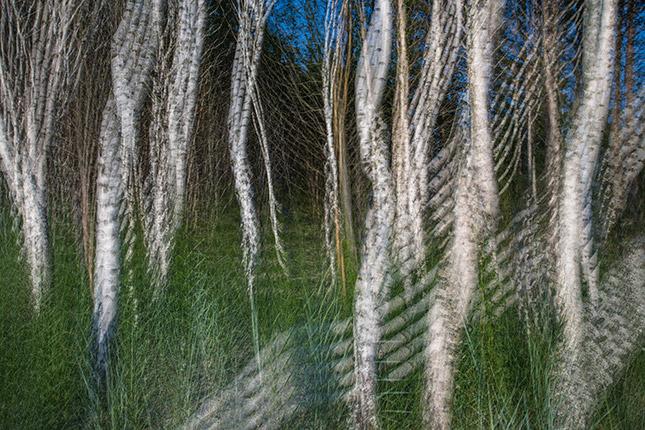 Doppelt, dreifach und geschüttelt – Kreative Aufnahmetechniken in der Landschaftsfotografie, © Hans-Peter Schaub