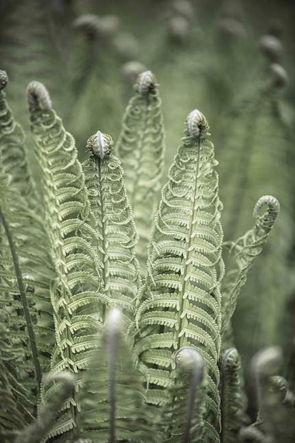 Bildgestaltung, © Sacha Goerke