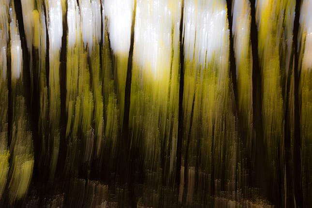 Anders sehen, © Anouchka Olszewski / Peter Giefer_c_anders_sehen-8