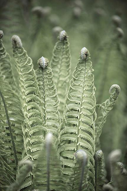 Dauerlicht , © Sacha Goerke