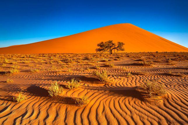 Multivision Namibia