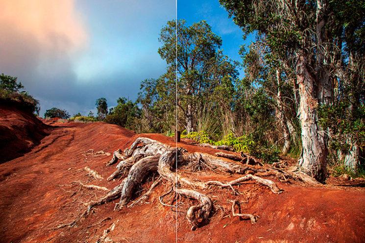 Fotografischer Workflow mit Lightroom und Photoshop, © Maike Jarsetz